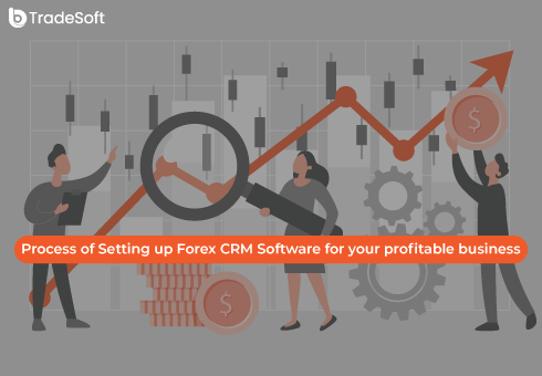 Process of Setting up Forex CRM Software for your profitable business