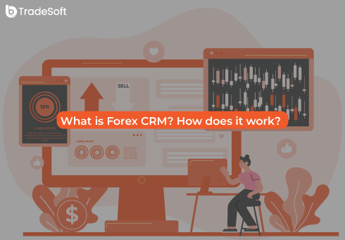 What is Forex CRM? How does it work?